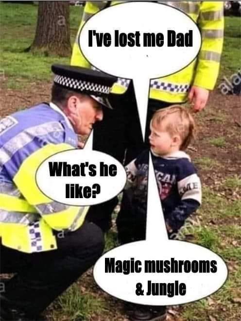 Magic Mushrooms and Jungle DNB MEME